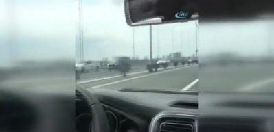 15 Temmuz Köprüsü'ndeki 'hayalet sürücü' yakalandı