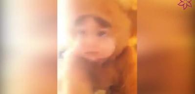 Ayı kostümü giyen bebek görenleri kahkahaya boğuyor