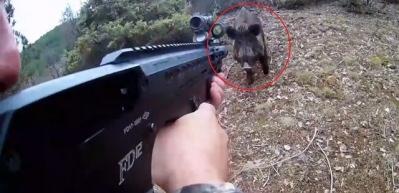 Böyle domuz avı görülmedi: Bir anda karşı karşıya kaldılar
