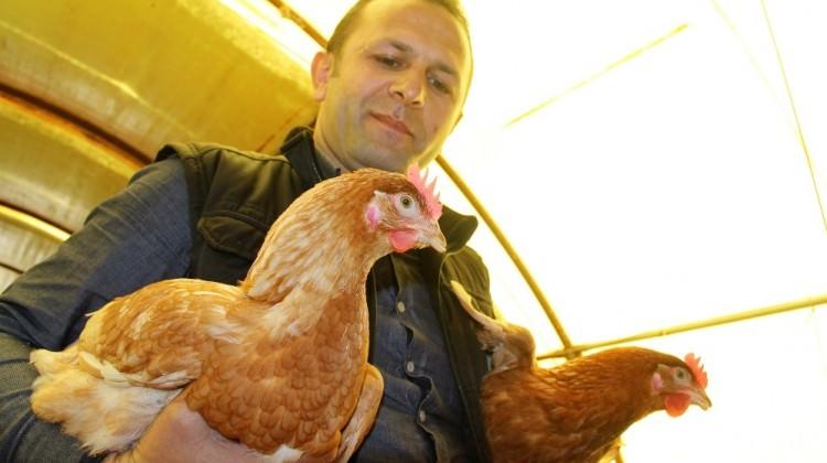 Ödünç aldığı 1 horoz, 2 tavuk hayatı değişti