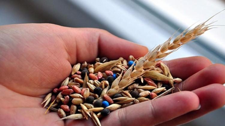 İthalattan bıktı kendi hibrit tohum tesisini kurdu