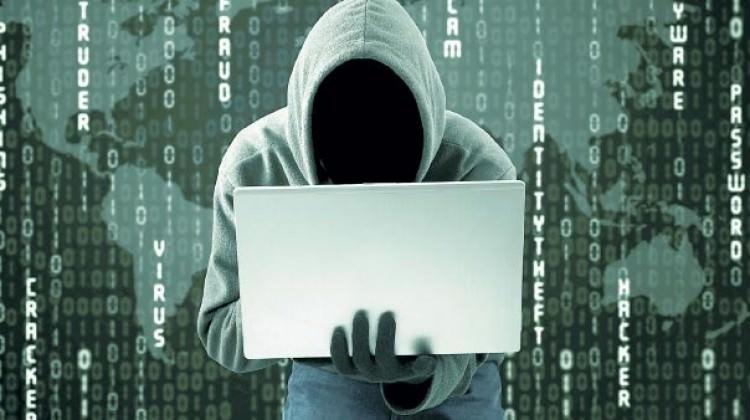 177 siber ve telefon dolandırıcısı yakalandı