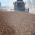 Ekilmeyen tarlaları devlet ekecek!