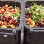 Gıda israfında Türk çözümü yankı uyandırdı