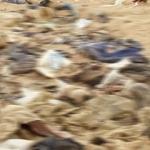 Myanmar ordusu, Arakan'da toplu mezar buldu