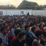 Edirne'de bir yılda 50 bin kaçak yakalandı