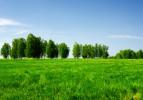 Toplulaştırılan arazi 5 milyon hektara yaklaştı
