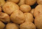 Yüzde 100 yerli patatesler geliyor