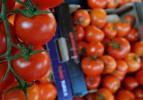 """Taze sebze ihracatını """"domates"""" sırtladı"""