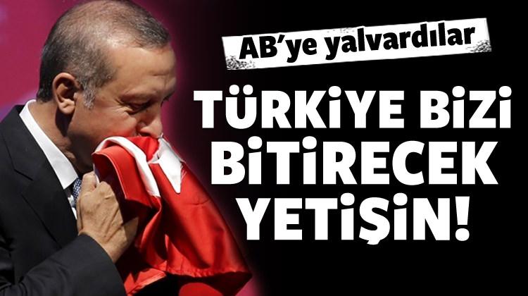 Rumları korku sardı: Türkiye bizi bitirecek